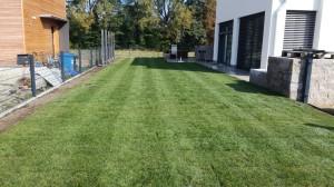 Referenzen Rollrasen - Florian Lehner - Garten und Landschaftsbau in Landshut